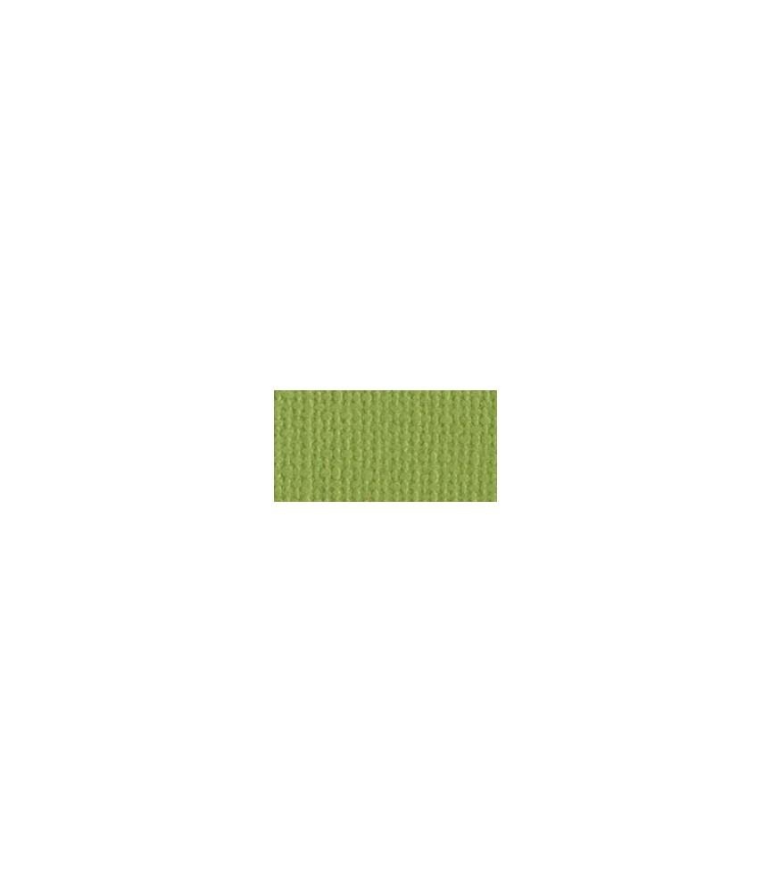 Scrapbooking-Papier Bazzill Mono Parakeet