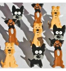 Brads Hunde