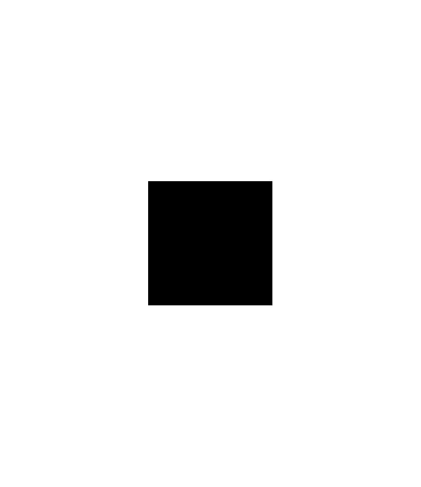 Nachfüllfarbe für Pigment-Stempelkissen Schwarz