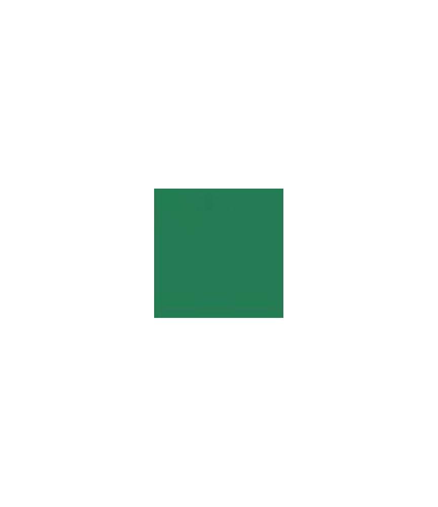 Versacolor Pigment-Stempelkissen Green