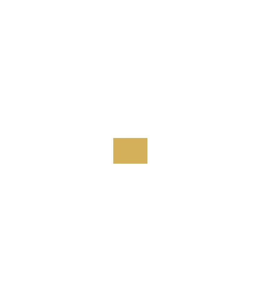 Versacolor Mini Pigment Stempelkissen Gold