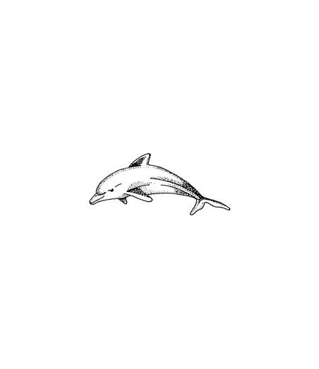 Mini Stempel Delfin