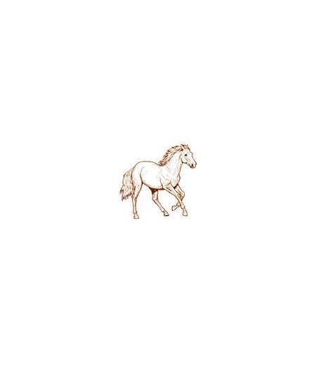 Pferd Stempel