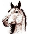 Pferdekopf Stempel