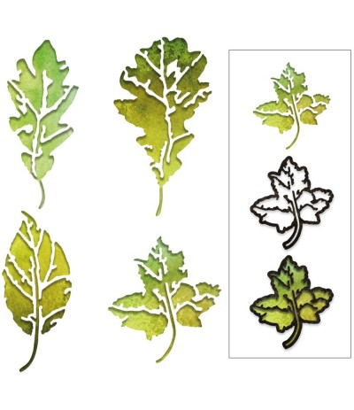 Stanzschablonen Leaf Print - Sizzix