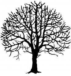 Baum Stempel