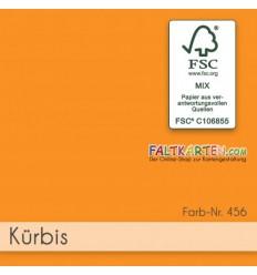 Scrapbooking Papier in Kürbis, 12 Stk. - FK