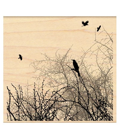 Winter Sky Birds Holzstempel - Penny Black