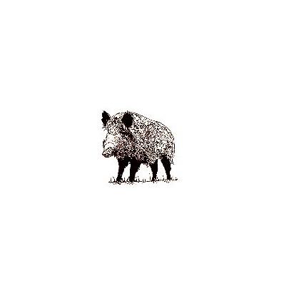 Wildschwein Stempel