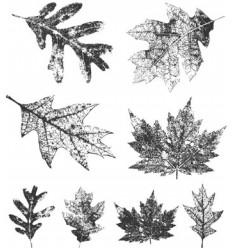 Tim Holtz Stempel Set Falling Leaves