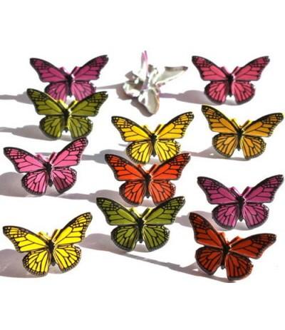 Brads Schmetterlinge