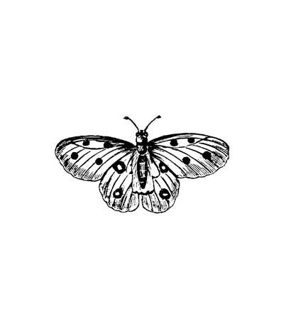 Schmetterlinge Stempel