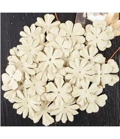 Prima Flowers Blumen Kraft