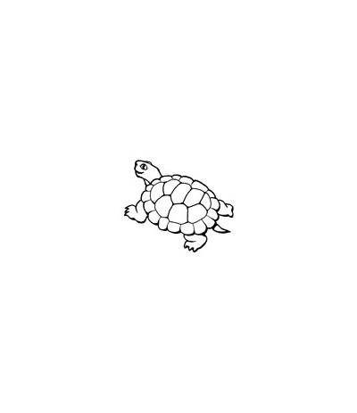 Mini Stempel Land-Schildkröte