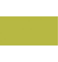 TOMBOW Dual Brush Pen Green Ochre ABT-076