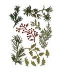 Stanzschablonen Mini Holiday Greens - Tim Holtz
