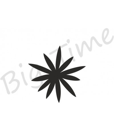 Sternblume Stempel