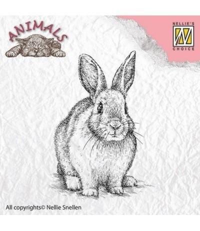 Clear Stamp Rabbit - Nellie Snellen