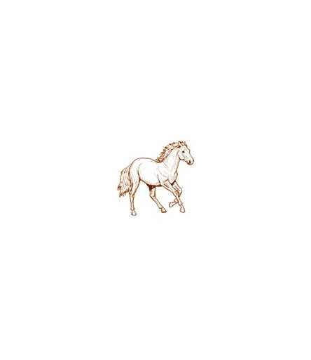 Stempelset Pferde