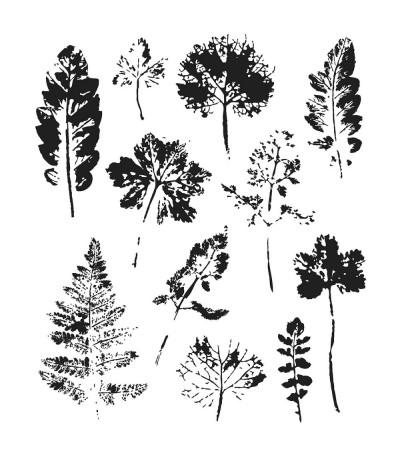 Cling Stempel Nature's Wonder von Tim Holtz