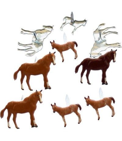 Brads Horse/ Pony