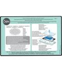 Precision Base Plate / Präzisionsgrundplatte - Sizzix