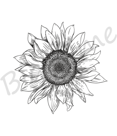 Sonnenblume Stempel gross - Big Time