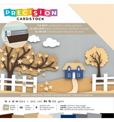 Precision Cardstock Neutral mit blau, 30.5 x 30.5 cm - American Crafts