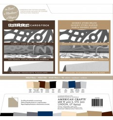 Precision Cardstock Neutral, 30.5 x 30.5 cm - American Crafts