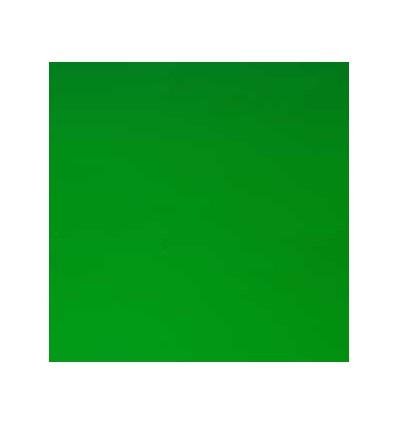 Adhäsionsfolie grün, 20 x 30cm - Plottermarie