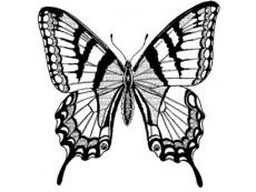 Schmetterlinge & Insekten Stempel