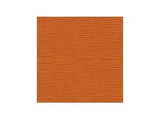 Scrapbooking Papier Bazzill 30.5 x 30.5cm